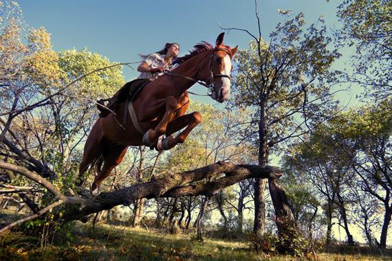 Prezent dla sportowca - nauka jazdy konnej