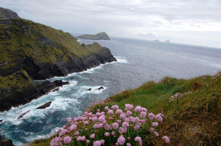 Co przywieźć z Irlandii?